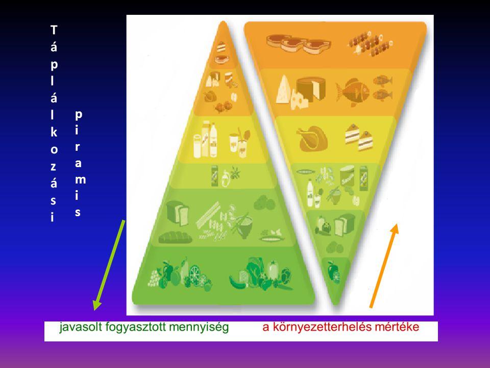 piramispiramis
