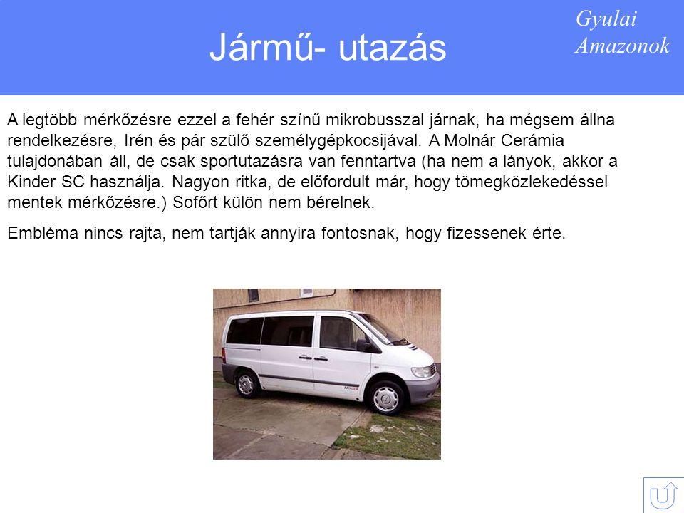 Gyulai Amazonok Jármű- utazás A legtöbb mérkőzésre ezzel a fehér színű mikrobusszal járnak, ha mégsem állna rendelkezésre, Irén és pár szülő személygépkocsijával.