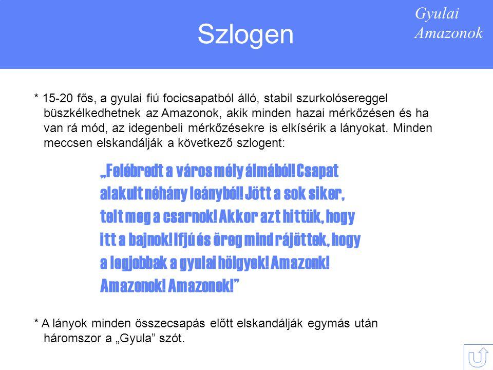 Gyulai Amazonok Szervezeti felépítés Mivel a női labdarúgás Magyarországon még nem hódított akkora teret magának, hogy érdekelje a társadalmat, a legtöbb klub önerőből működik.