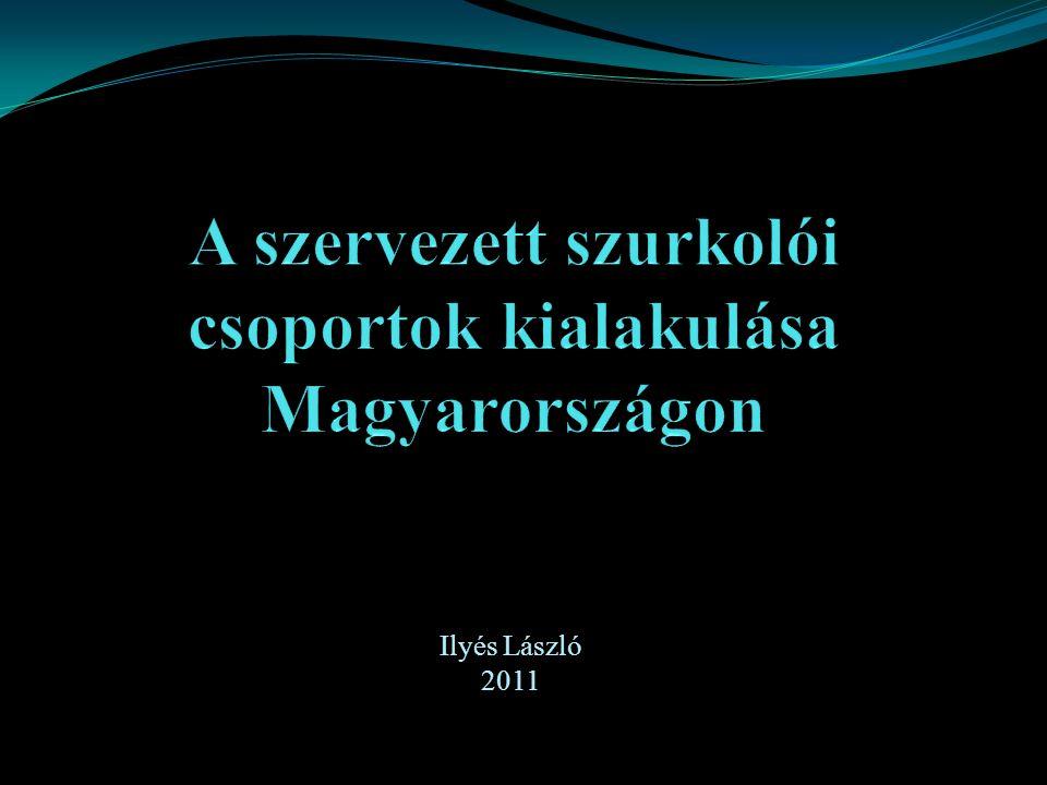 Ilyés László 2011