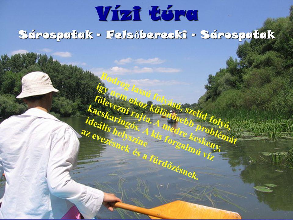 Vízi túra Sárospatak – Fels ő berecki - Sárospatak Bodrog lassú folyású, szelíd folyó, így nem okoz különösebb problémát fölevezni rajta.