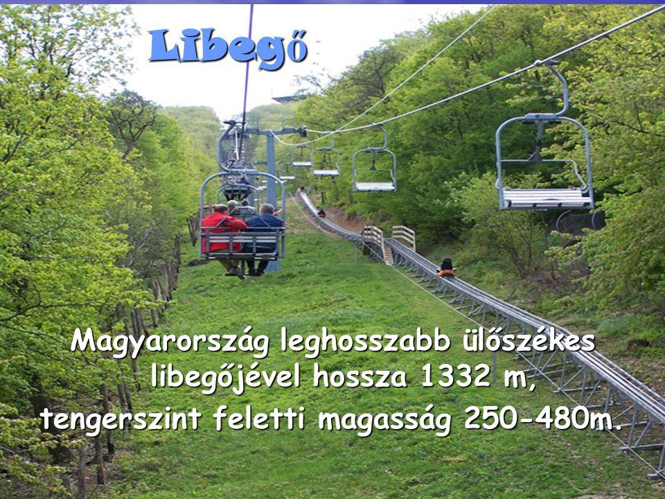 Libeg ő Magyarország leghosszabb ülőszékes libegőjével hossza 1332 m, tengerszint feletti magasság 250-480m.