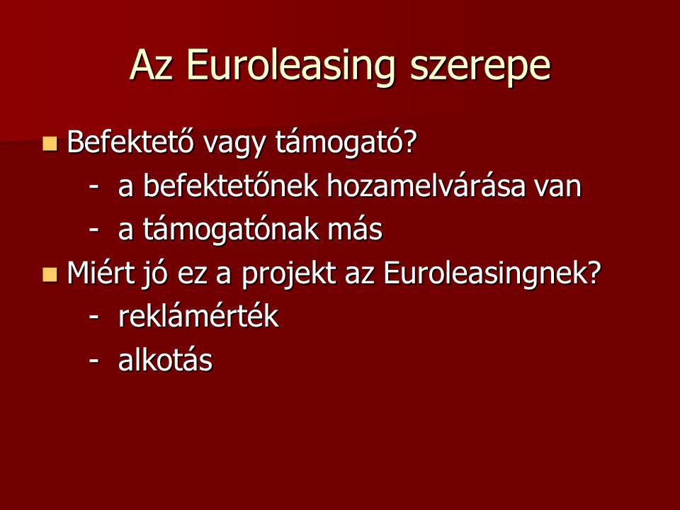 Az Euroleasing szerepe Befektető vagy támogató. Befektető vagy támogató.