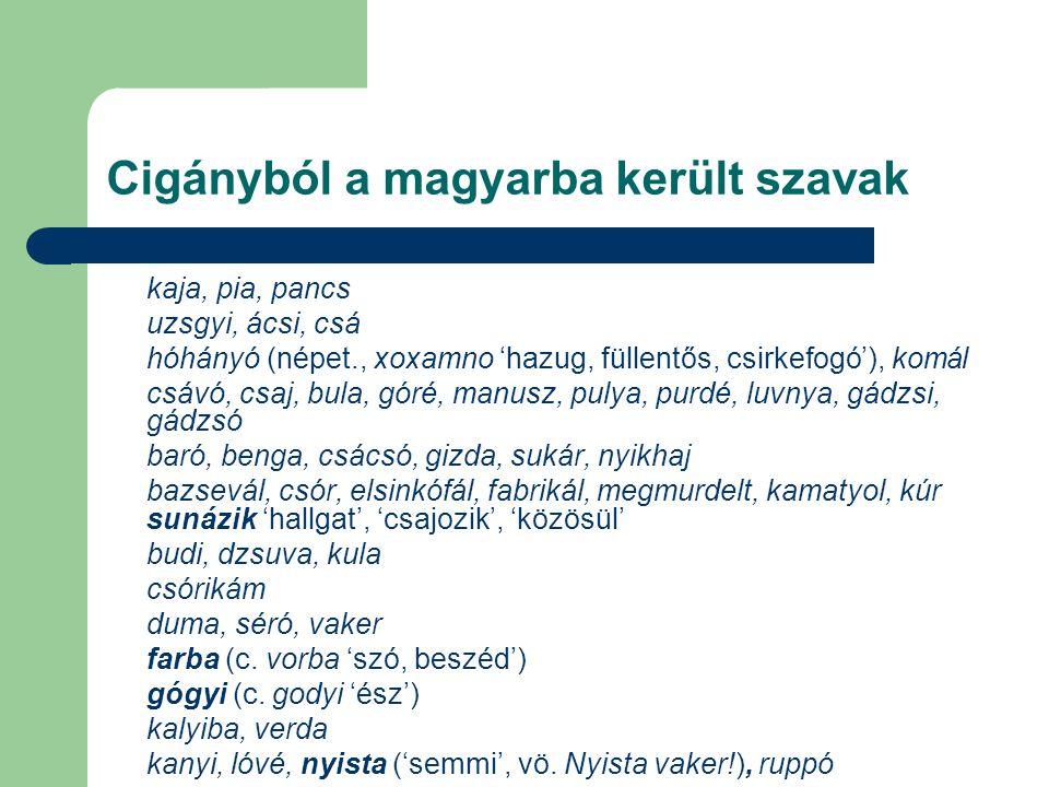 Cigányból a magyarba került szavak kaja, pia, pancs uzsgyi, ácsi, csá hóhányó (népet., xoxamno 'hazug, füllentős, csirkefogó'), komál csávó, csaj, bul