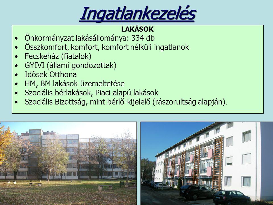 Ingatlankezelés LAKÁSOK Önkormányzat lakásállománya: 334 db Összkomfort, komfort, komfort nélküli ingatlanok Fecskeház (fiatalok) GYIVI (állami gondozottak) Idősek Otthona HM, BM lakások üzemeltetése Szociális bérlakások, Piaci alapú lakások Szociális Bizottság, mint bérlő-kijelelő (rászorultság alapján).