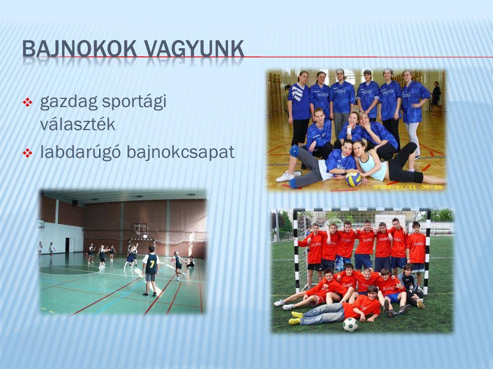  gazdag sportági választék  labdarúgó bajnokcsapat
