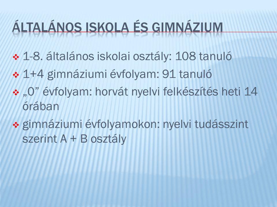  csak horvátul: horvát nyelv- és irodalom, földrajz, történelem  magyarul és horvátul: minden más tantárgy  idegennyelvű képzés: angol, német