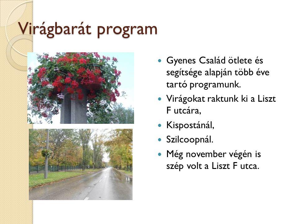 Virágbarát program Gyenes Család ötlete és segítsége alapján több éve tartó programunk. Virágokat raktunk ki a Liszt F utcára, Kispostánál, Szilcoopná