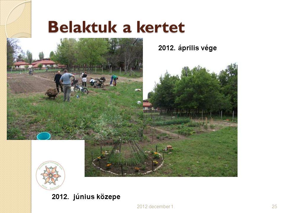 Belaktuk a kertet 2012.december 1.25 2012. június közepe 2012. április vége