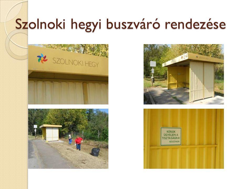 Szolnoki hegyi buszváró rendezése