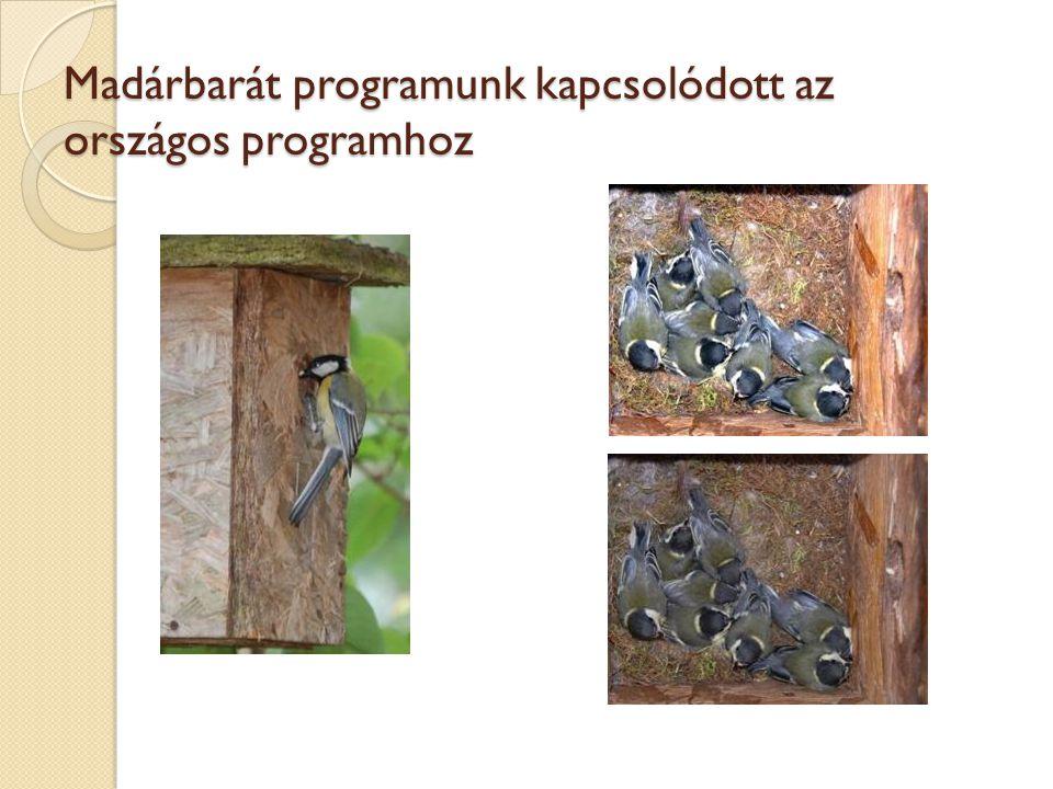 Országosan egyedülálló Szabó Barna munkája Örömmel számolhatunk be arról, hogy a Hunyadivárosi Madárbarát Programot már hazánk legnagyobb, nemzetközileg is komoly elismertségnek örvendő természetvédelmi egyesülete - az 1974-ben alapított Magyar Madártani és Természetvédelmi Egyesület - is támogatja.
