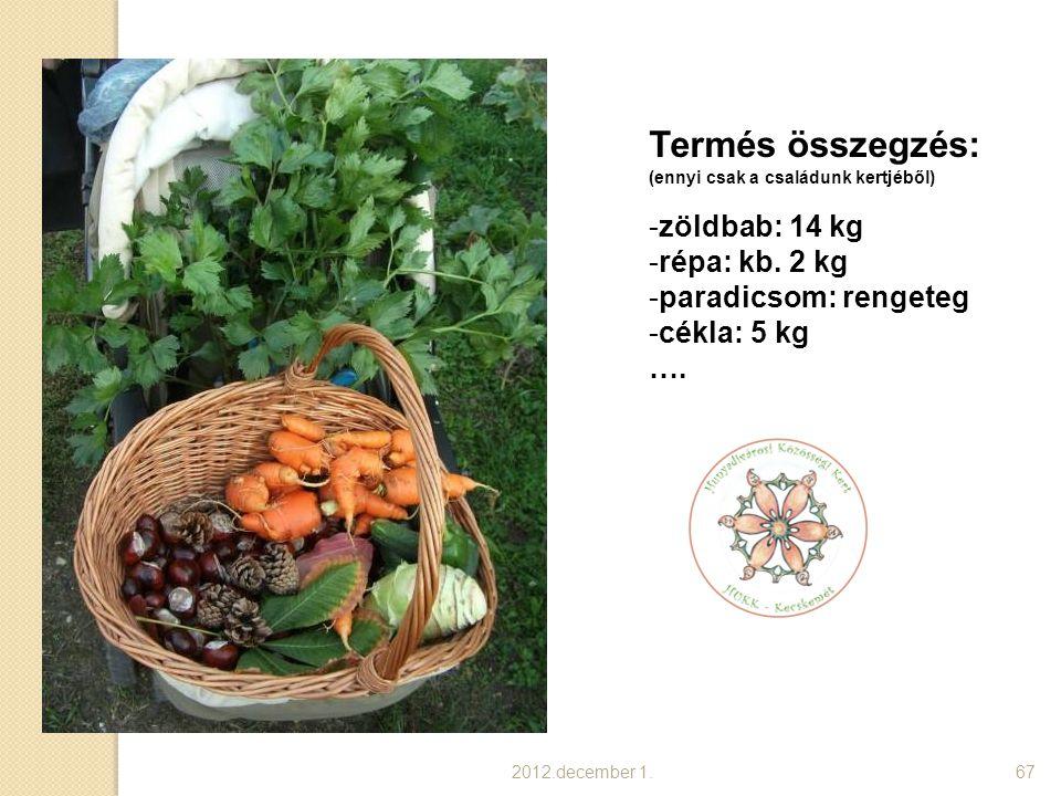 2012.december 1.68 Termés összegzés: (ennyi csak a családunk kertjéből) … -uborka: 10 kg -petrezselyem: 1 kg -cukkíni: 5 kg -karalábé: 5 kg -lilakáposzta: 2 kg -stb… Több, mint 50 kg zöldség.
