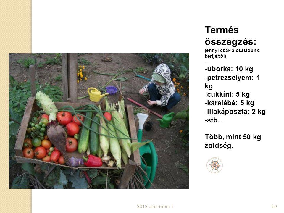 2012.december 1.68 Termés összegzés: (ennyi csak a családunk kertjéből) … -uborka: 10 kg -petrezselyem: 1 kg -cukkíni: 5 kg -karalábé: 5 kg -lilakápos
