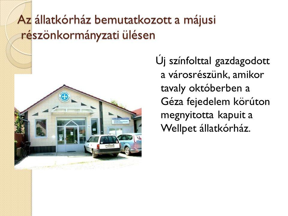 Az állatkórház bemutatkozott a májusi részönkormányzati ülésen Új színfolttal gazdagodott a városrészünk, amikor tavaly októberben a Géza fejedelem kö