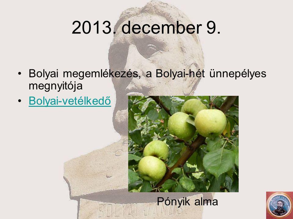 2013. december 9. Bolyai megemlékezés, a Bolyai-hét ünnepélyes megnyitója Bolyai-vetélkedő Pónyik alma