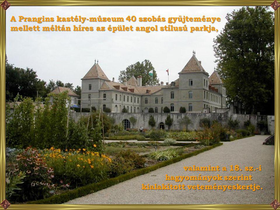 Nyon közelében található az 1730-ban, dombon épült Prangins kastély, gyönyörű kilátással a Genfi tóra. Itt kilátással a Genfi tóra. Itt lakott Napoleo
