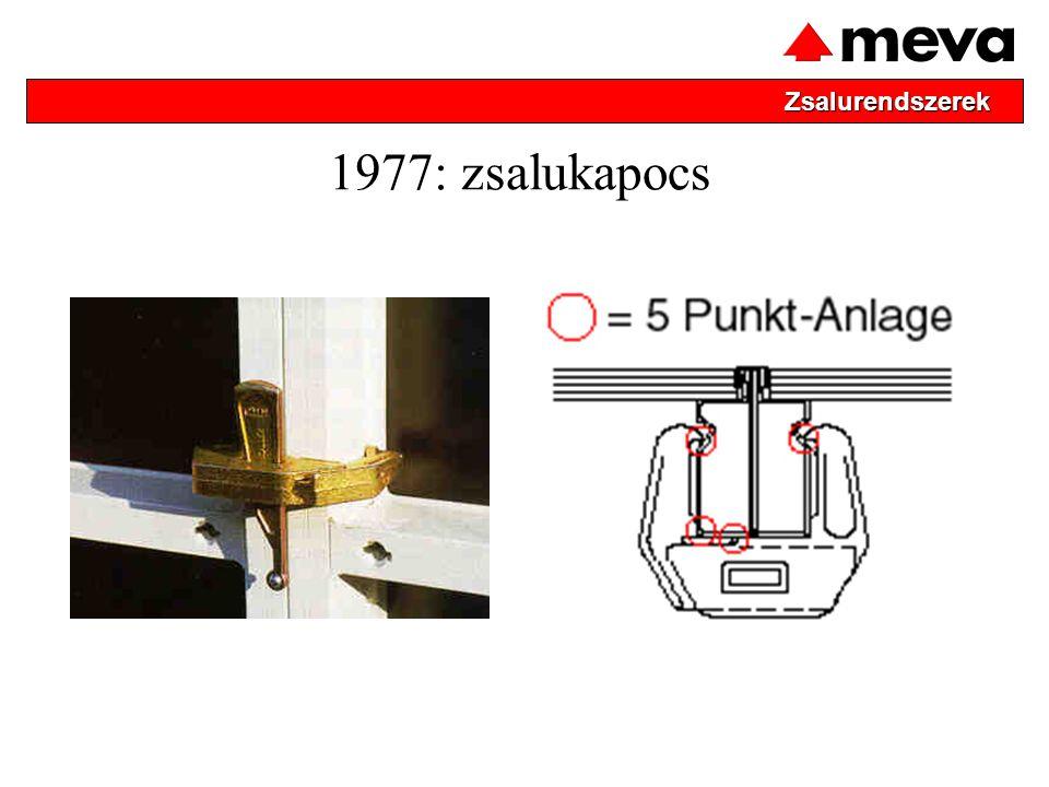 1977: zsalukapocs Zsalurendszerek