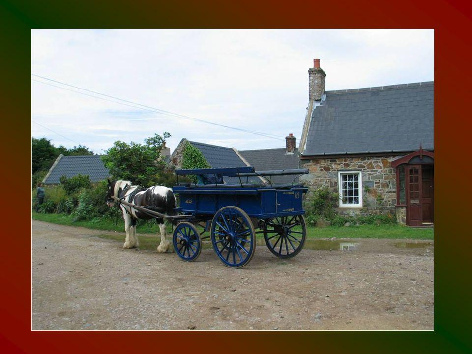 Gépjárművek üzemeltetése a szigeten tilos, ezeket biciklik és lovaskocsik helyettesítik.