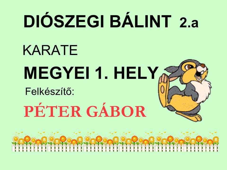 DIÓSZEGI BÁLINT 2.a KARATE MEGYEI 1. HELY Felkészítő: PÉTER GÁBOR