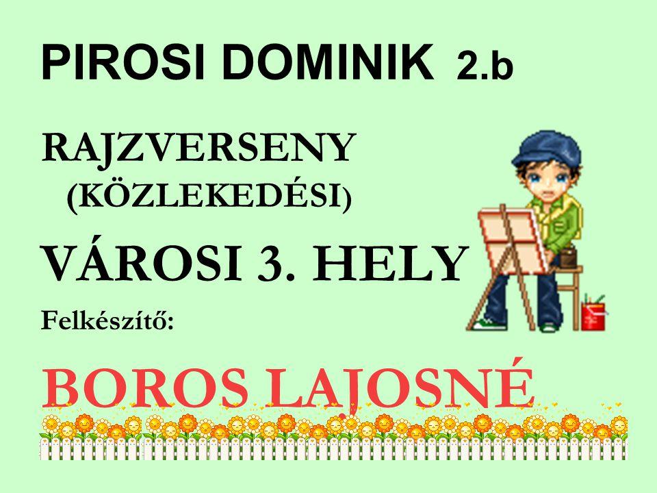 PIROSI DOMINIK 2.b RAJZVERSENY (KÖZLEKEDÉSI ) VÁROSI 3. HELY Felkészítő: BOROS LAJOSNÉ