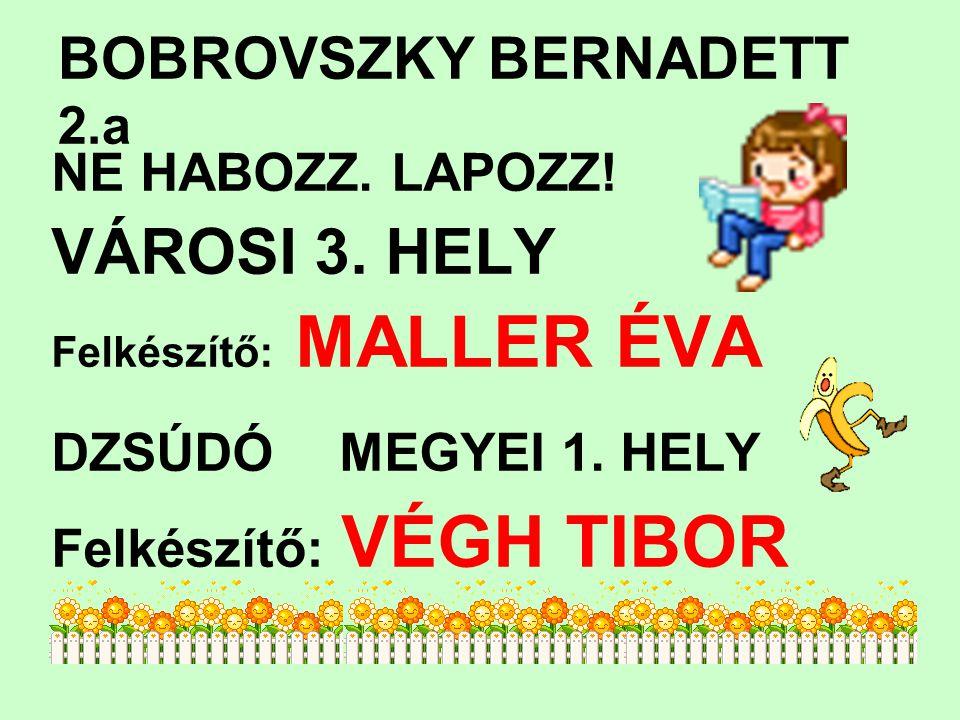 BOBROVSZKY BERNADETT 2.a NE HABOZZ.LAPOZZ. VÁROSI 3.