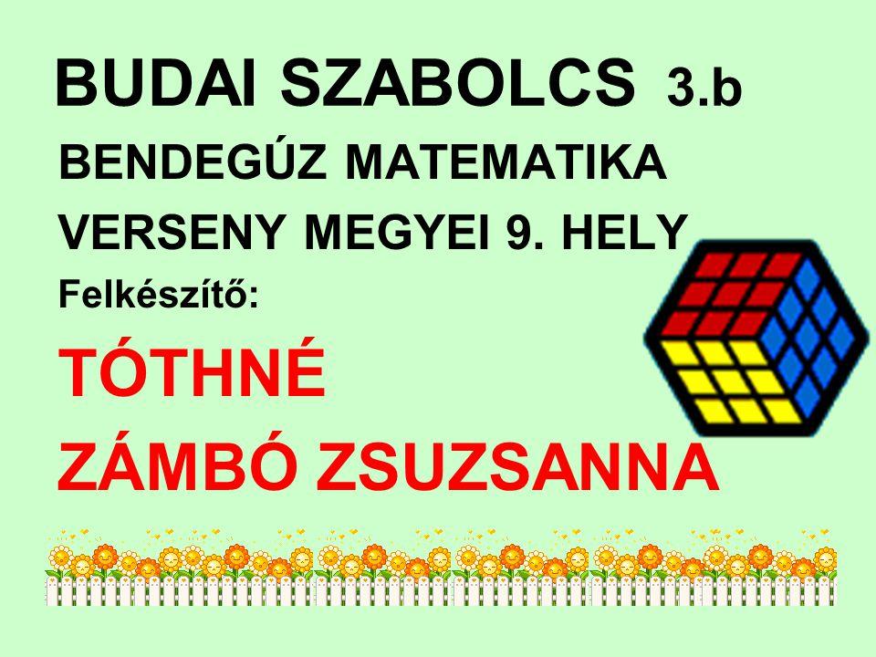 BUDAI SZABOLCS 3.b BENDEGÚZ MATEMATIKA VERSENY MEGYEI 9. HELY Felkészítő: TÓTHNÉ ZÁMBÓ ZSUZSANNA