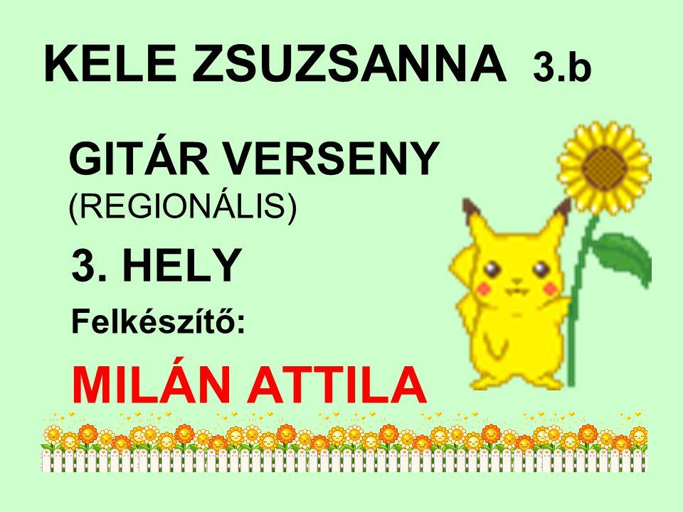 KELE ZSUZSANNA 3.b GITÁR VERSENY (REGIONÁLIS) 3. HELY Felkészítő: MILÁN ATTILA