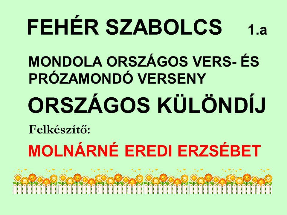 KUZSMICZKY-ROMOCSA LILI 3.d MONDOLA ORSZÁGOS VERSMONDÓ V.