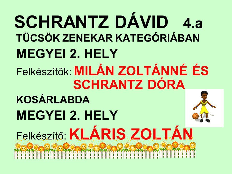 SCHRANTZ DÁVID 4.a TÜCSÖK ZENEKAR KATEGÓRIÁBAN MEGYEI 2.