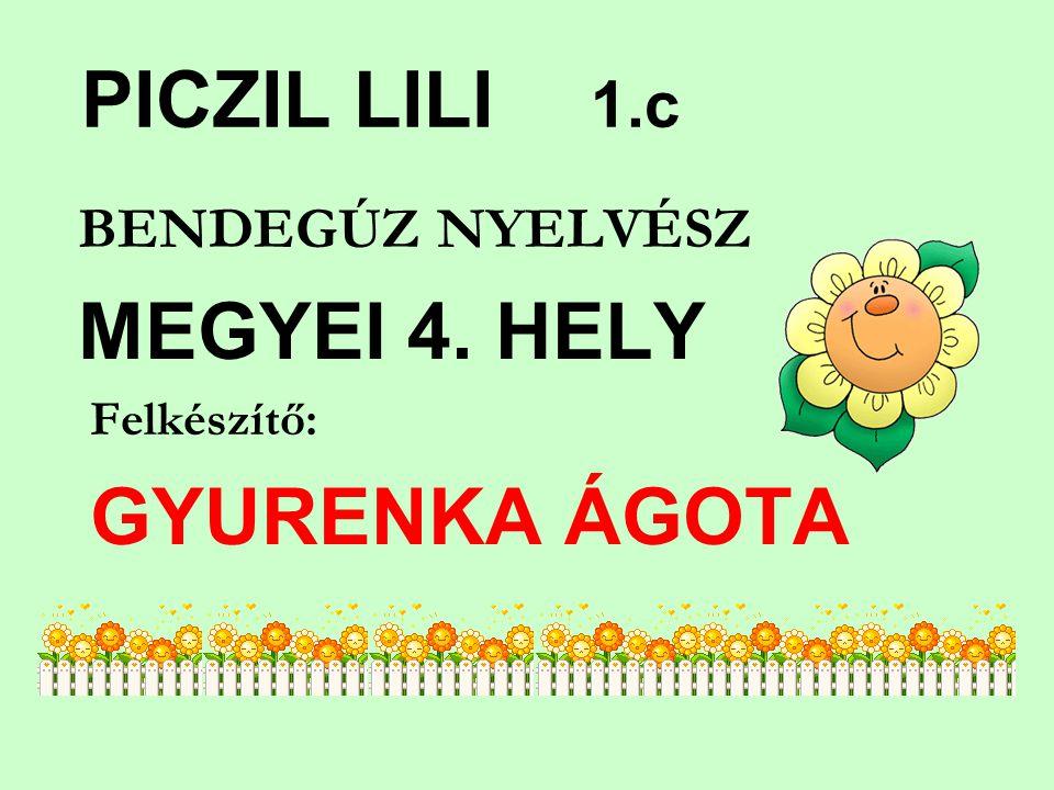 PICZIL LILI 1.c BENDEGÚZ NYELVÉSZ MEGYEI 4. HELY Felkészítő: GYURENKA ÁGOTA