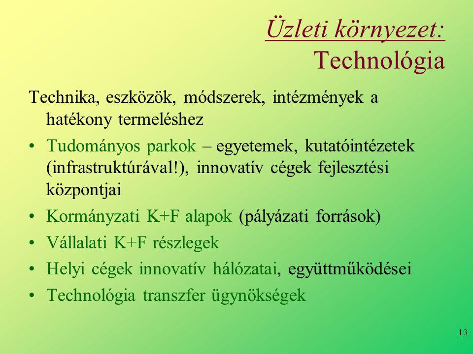 13 Üzleti környezet: Technológia Technika, eszközök, módszerek, intézmények a hatékony termeléshez Tudományos parkok – egyetemek, kutatóintézetek (infrastruktúrával!), innovatív cégek fejlesztési központjai Kormányzati K+F alapok (pályázati források) Vállalati K+F részlegek Helyi cégek innovatív hálózatai, együttműködései Technológia transzfer ügynökségek