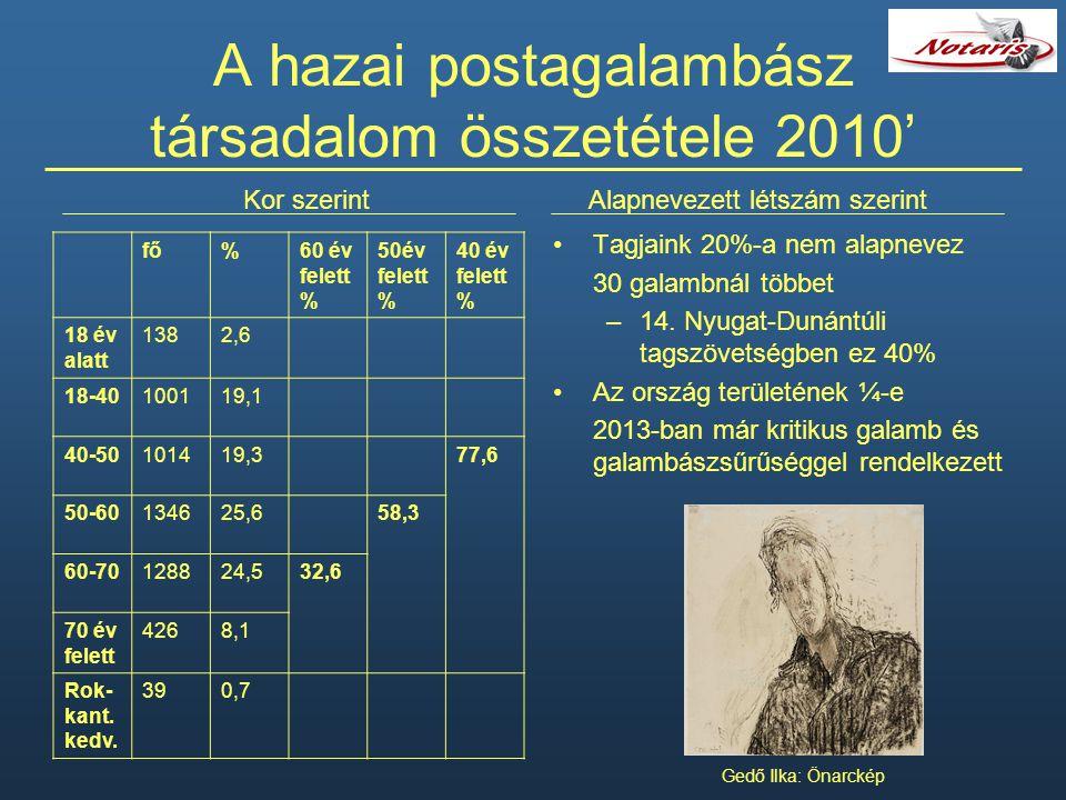A hazai postagalambász társadalom összetétele 2010' Tagjaink 20%-a nem alapnevez 30 galambnál többet –14. Nyugat-Dunántúli tagszövetségben ez 40% Az o