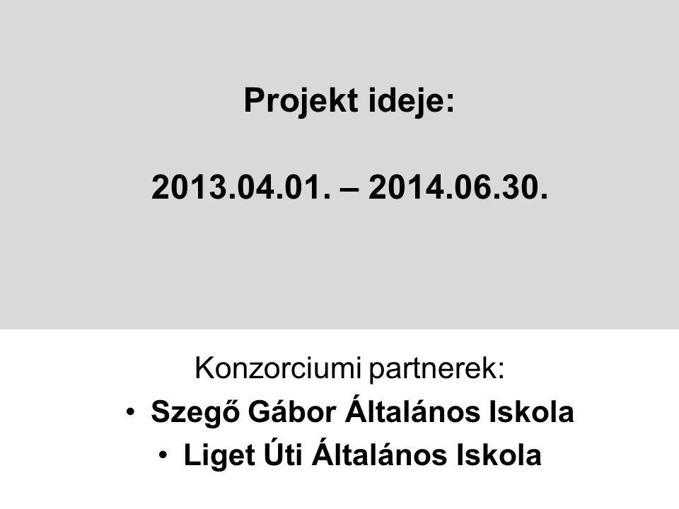 Projekt ideje: 2013.04.01. – 2014.06.30.