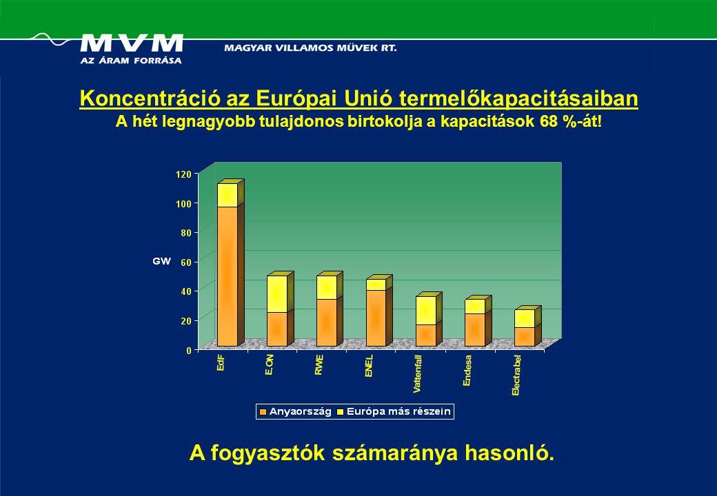 Koncentráció az Európai Unió termelőkapacitásaiban A hét legnagyobb tulajdonos birtokolja a kapacitások 68 %-át.