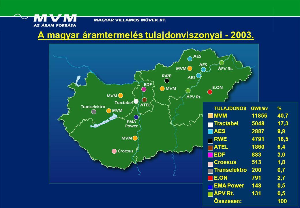 A magyar áramtermelés tulajdonviszonyai - 2003.