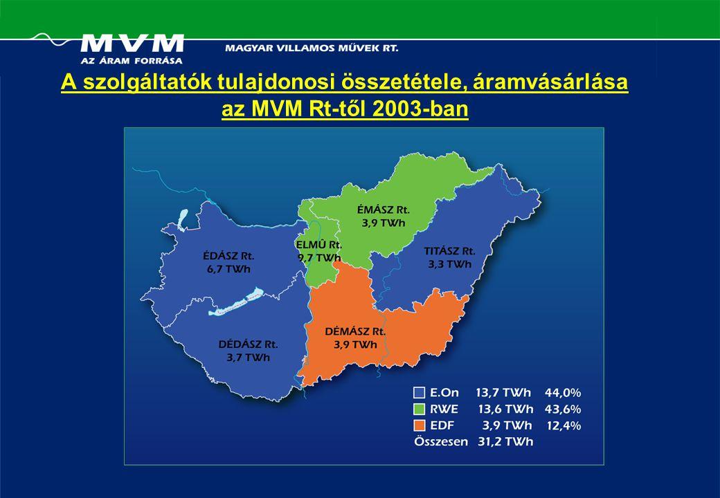 A szolgáltatók tulajdonosi összetétele, áramvásárlása az MVM Rt-től 2003-ban