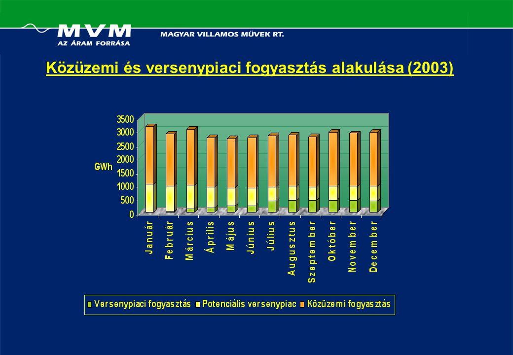 Közüzemi és versenypiaci fogyasztás alakulása (2003)
