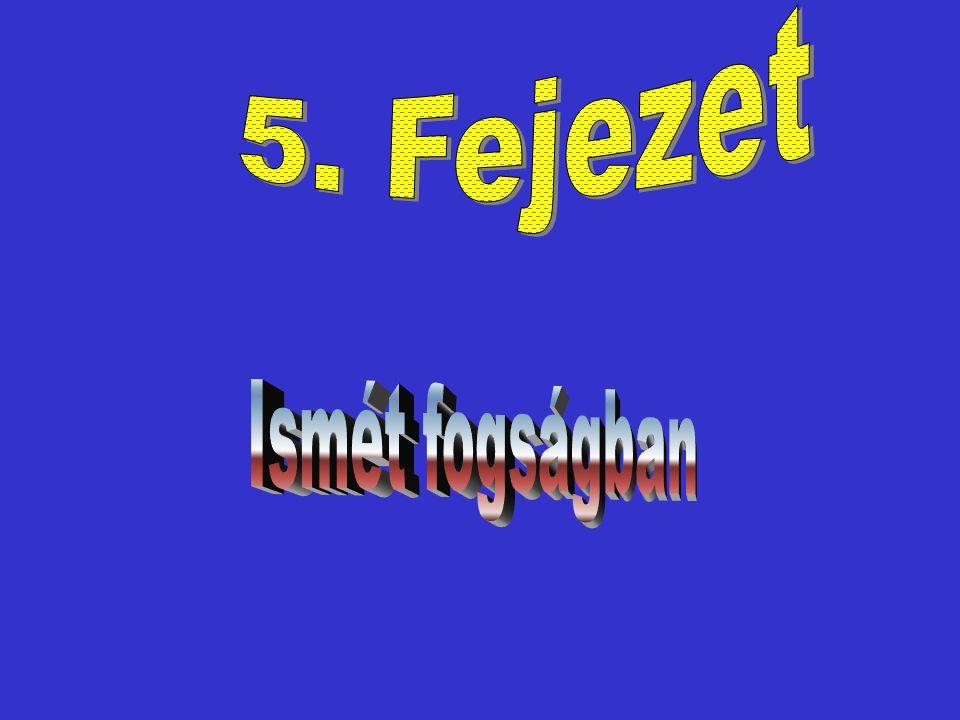 A 2. Fejezetben a Színes özvegy bosszút esküszött és túszul ejtett pár embert a 3.
