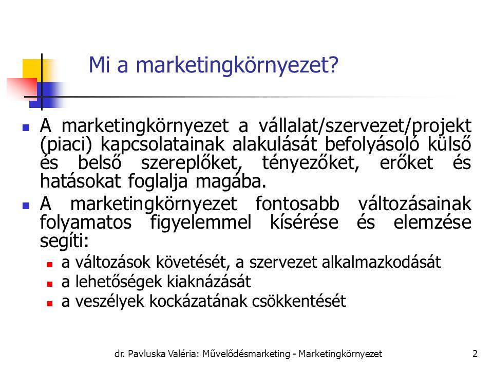 dr. Pavluska Valéria: Művelődésmarketing - Marketingkörnyezet2 Mi a marketingkörnyezet? A marketingkörnyezet a vállalat/szervezet/projekt (piaci) kapc