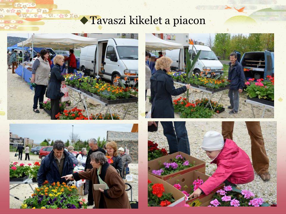  Tavaszi kikelet a piacon