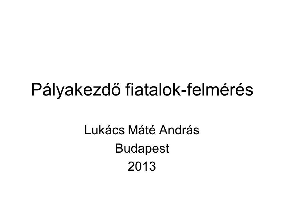 Pályakezdő fiatalok-felmérés Lukács Máté András Budapest 2013