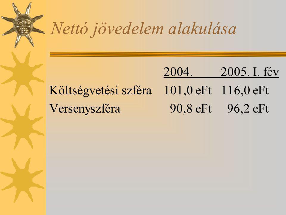 Nettó jövedelem alakulása 2004.2005. I. fév Költségvetési szféra101,0 eFt116,0 eFt Versenyszféra 90,8 eFt 96,2 eFt