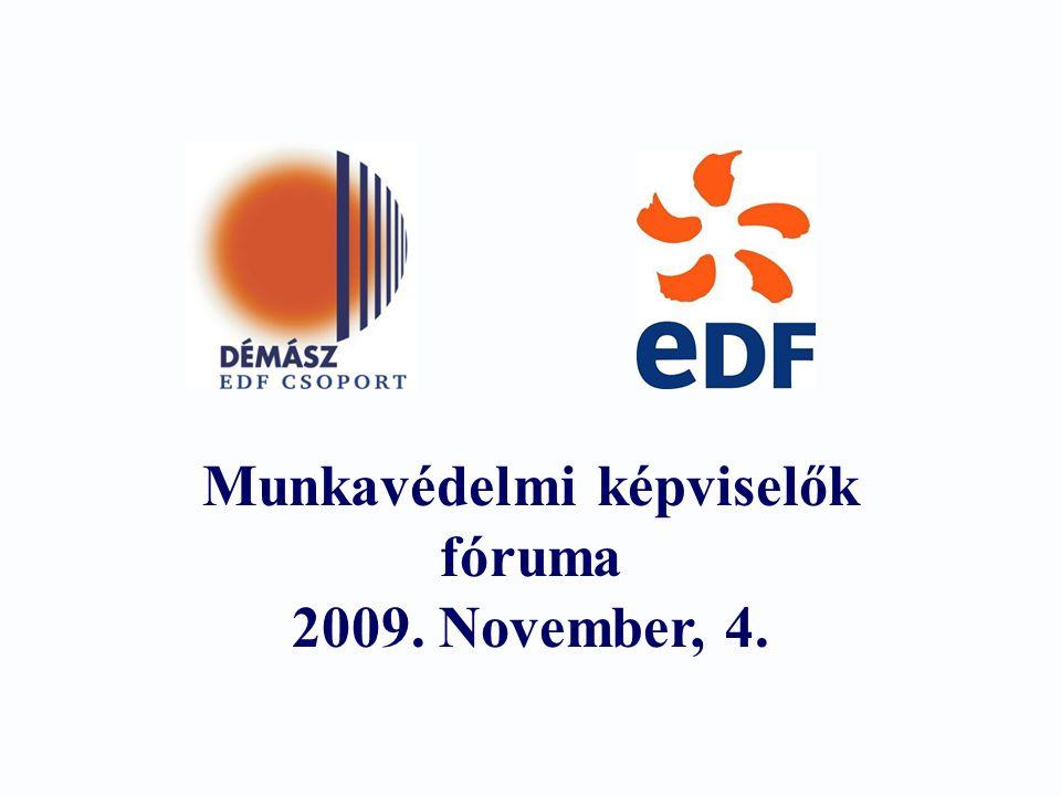 2 Cél : Bemutatni, miben számít a DÁMÁSZ vezetése a munkavédelmi képviselők segítségére Munka- és egészségvédelem a DÉMÁSZ-nál