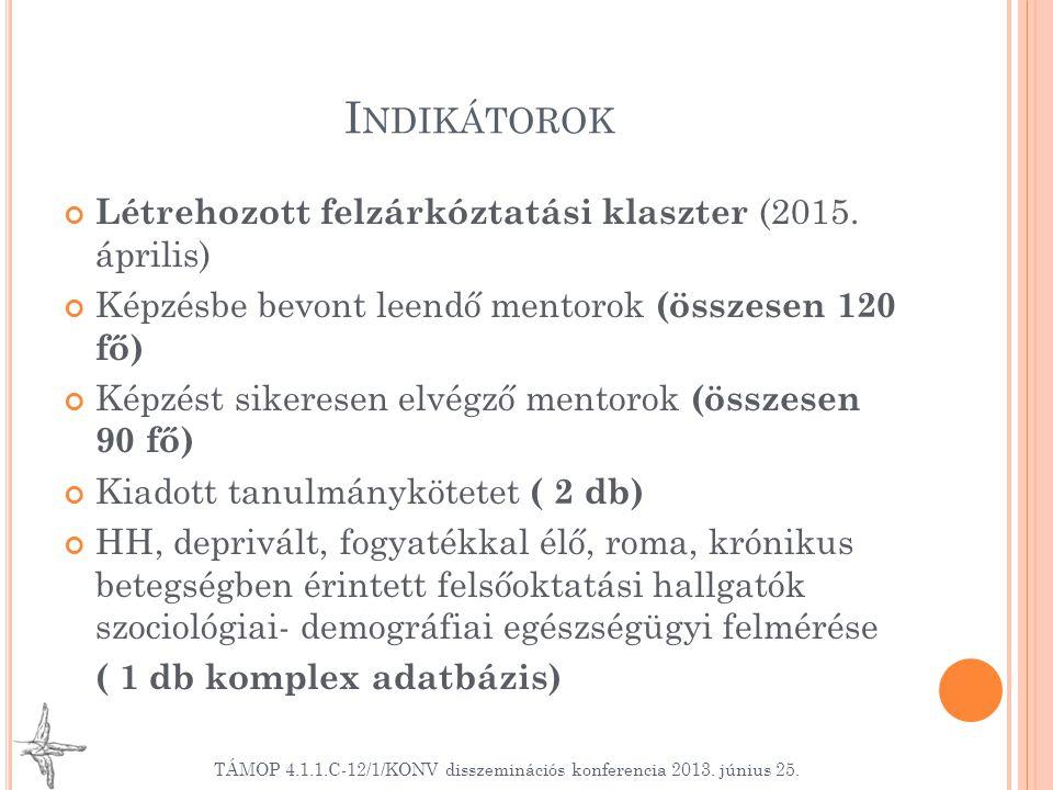 I NDIKÁTOROK Létrehozott felzárkóztatási klaszter (2015.