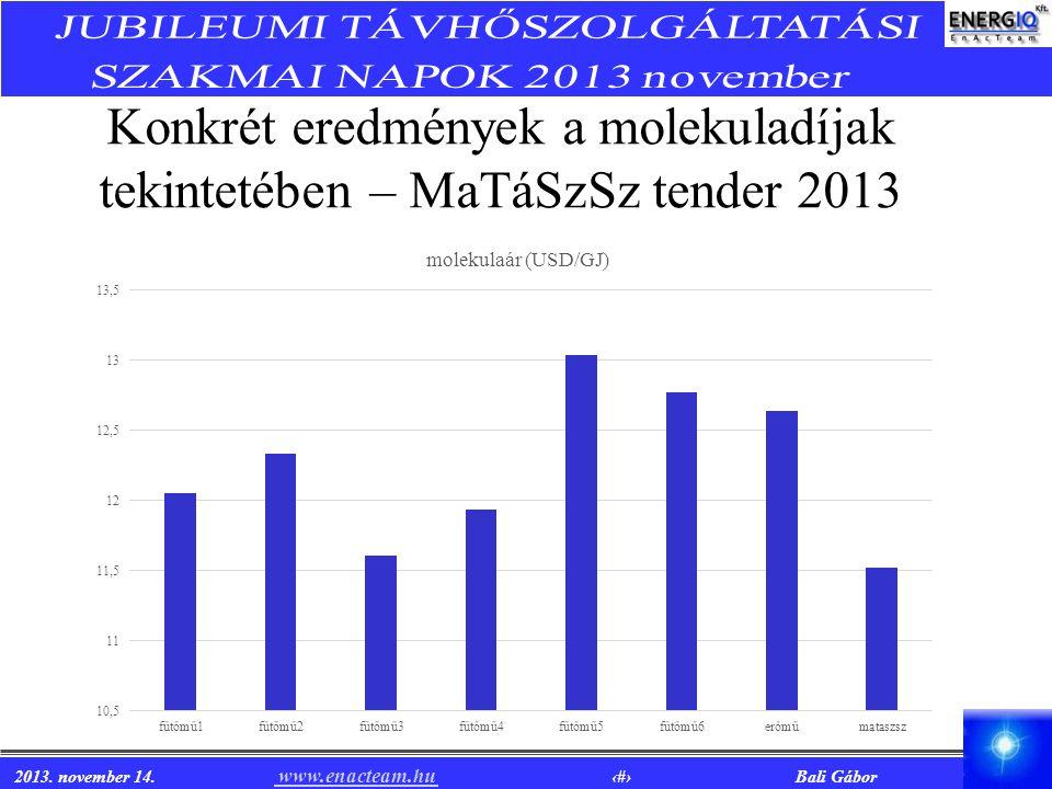 2013. november 14. www.enacteam.hu 12 Bali Gábor www.enacteam.hu Konkrét eredmények a molekuladíjak tekintetében – MaTáSzSz tender 2013