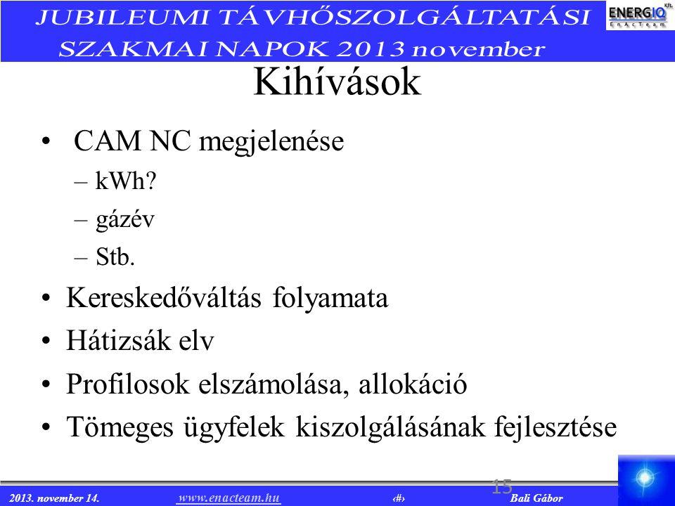 2013. november 14. www.enacteam.hu 15 Bali Gábor www.enacteam.hu Kihívások CAM NC megjelenése –kWh? –gázév –Stb. Kereskedőváltás folyamata Hátizsák el