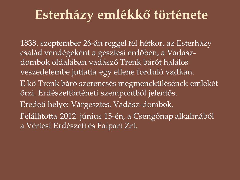 1838. szeptember 26-án reggel fél hétkor, az Esterházy család vendégeként a gesztesi erdőben, a Vadász- dombok oldalában vadászó Trenk bárót halálos v