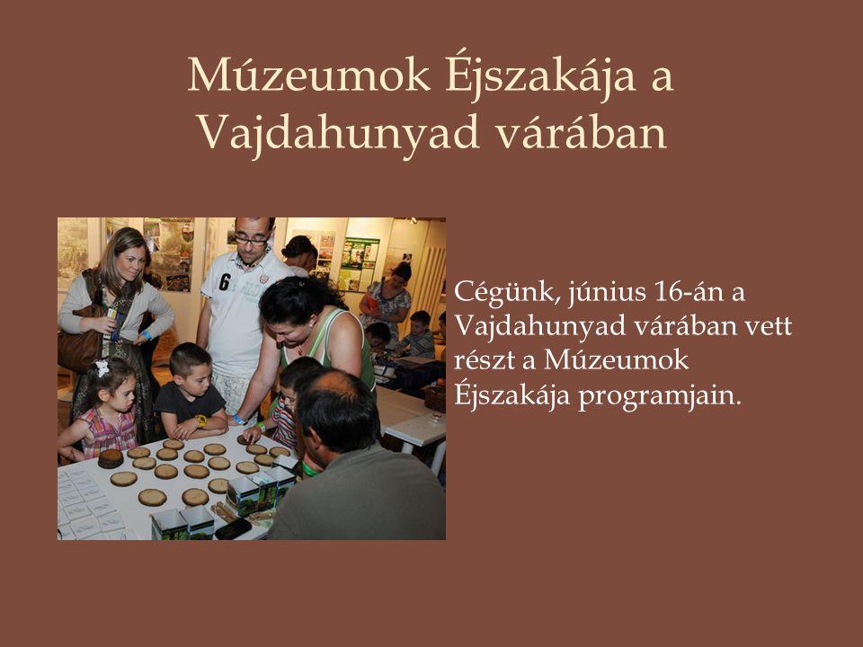 Múzeumok Éjszakája a Vajdahunyad várában Cégünk, június 16-án a Vajdahunyad várában vett részt a Múzeumok Éjszakája programjain.