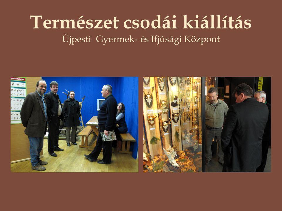 Természet csodái kiállítás Újpesti Gyermek- és Ifjúsági Központ