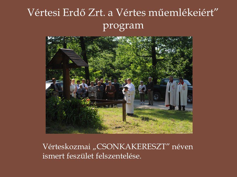 """Vérteskozmai """"CSONKAKERESZT"""" néven ismert feszület felszentelése. Vértesi Erdő Zrt. a Vértes műemlékeiért"""" program"""